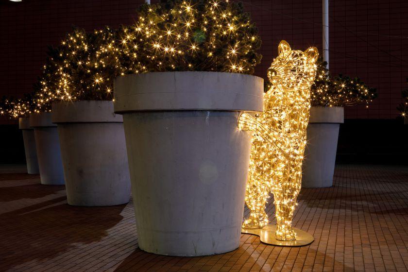 """Kauno """"Akropolyje"""" – žėrintis Kalėdų miestas mieste"""