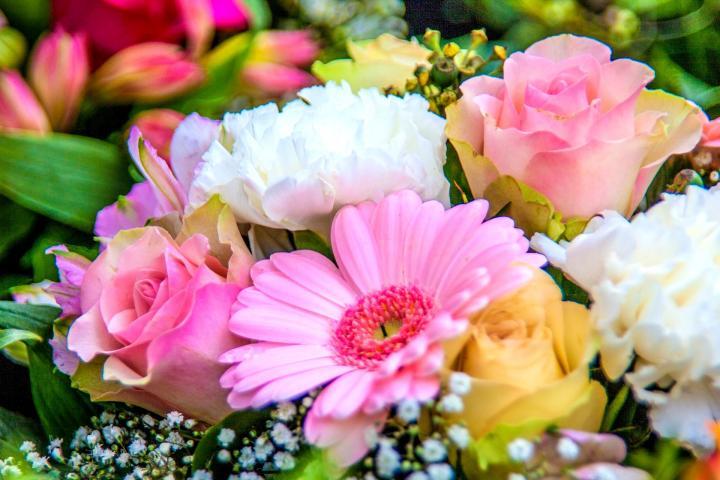 Gėlės gimtadieniui ir gimtadienio dovanos – Shorts.lt
