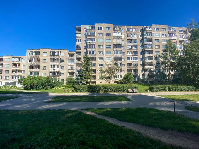 Svajonių kaimyno portretas lietuvių akimis: viską gali sugadinti viena savybė
