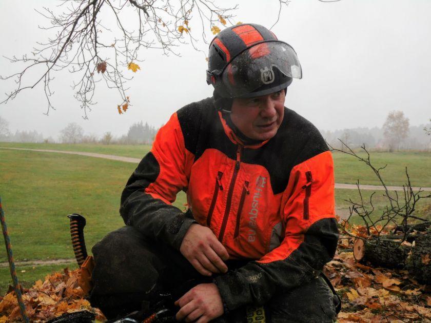 Ekspertas perspėja: dabar ne laikas eiti į mišką, kai kurių medžių reikia saugotis ir mieste