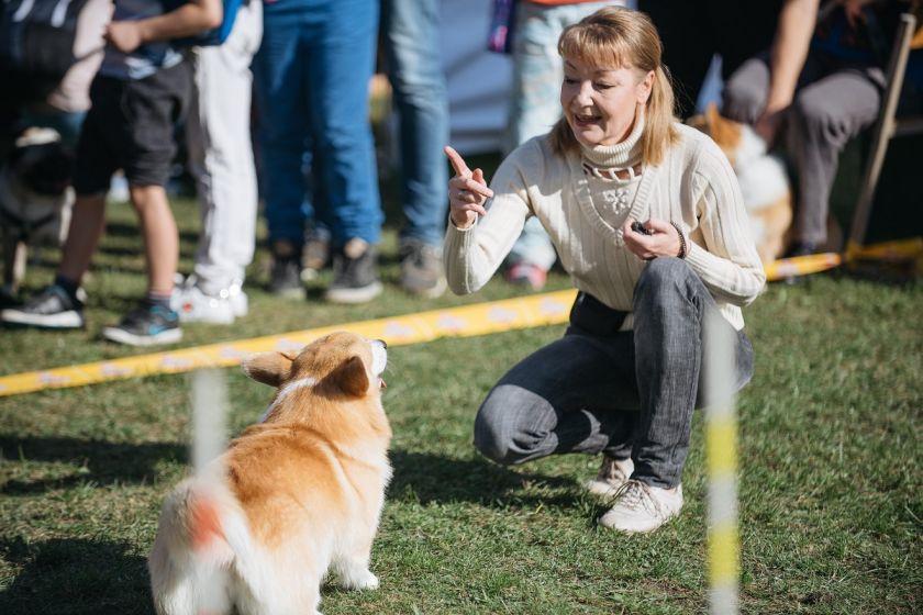 Šeštadienį – Pasaulinės gyvūnų dienos šventė Gargžduose: tikimasi rekordinės eisenos